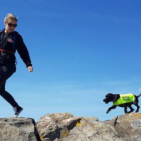 The Residential Dog Training Debate