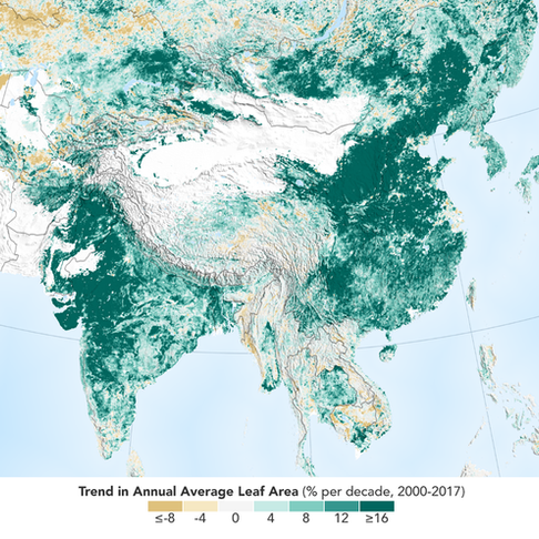 NASA Reports Earth Is Greener and There Are More Trees Than 20 Years Ago, Thanks to China and India