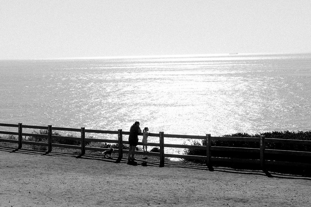 Mother and daughter standing at a fence with small dog and looking out to sea
