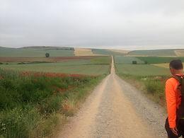 Jornada Transformadora pelos Caminhos de Santiago de Compostela