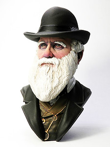 Busto di Charles darwin scale 1/10 frontal bust