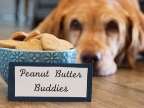 peanut butter buddies dog treats
