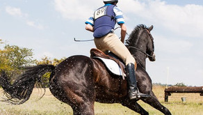Show Jumpers/Eventers - Core Training and the jumping position