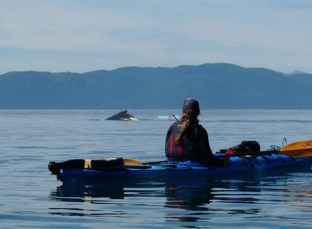 Summer Oceanography Field Course in Alaska