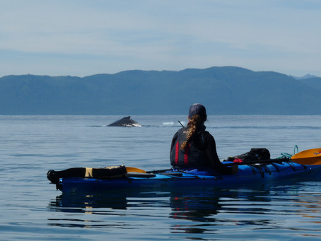 Summer Oceanography Field Course in Alaska
