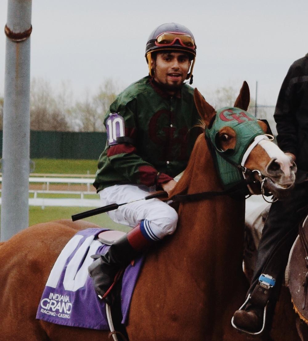 Quarter Horse racing, racehorse breeds, horse racing breeds