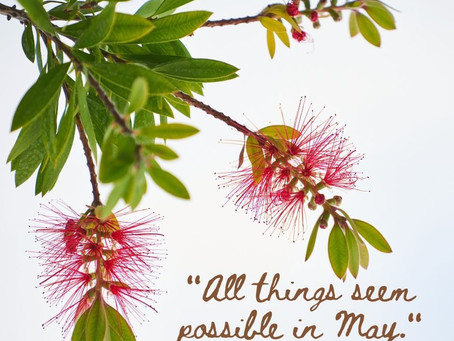 The Possibilities of May