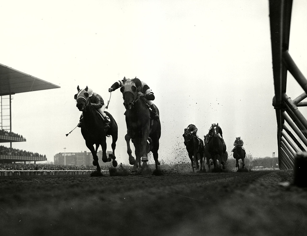 Francis S. racehorse named after Frank Sinatra winning the 1960 Bay Shore Handicap.
