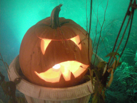 Pumpkin Carving Inspirations