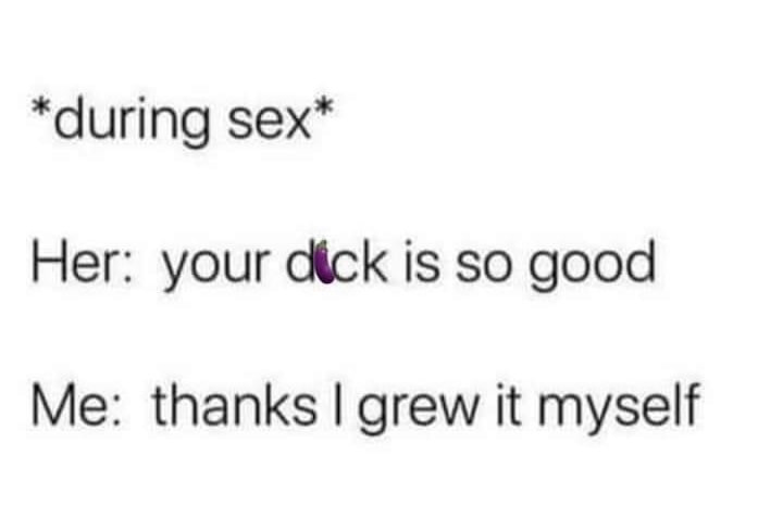 Funny Dick Memes