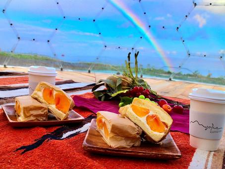LOTTE ARAI RESORTの山の上でピクニックとヨガ スローな1日を過ごしてみませんか?