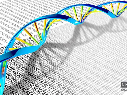 Selfish Genetic Elements