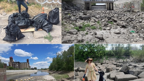 Cleaning Your Local Spaces: ''Shaucha'' and Spring