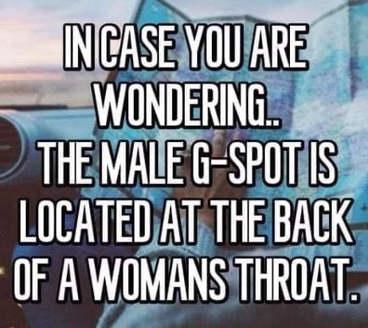 Male G-Spot Located Back of Women's Throat Meme