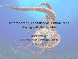 Donna Haraway: superare l'Antropocene