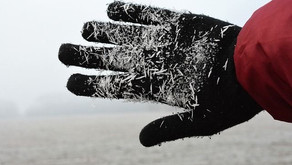 Jak posílit zdraví v zimě?