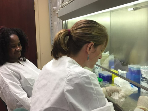 Training the Next Generation of Scientists