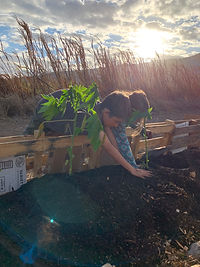 Composting for our Future, The Seeking R