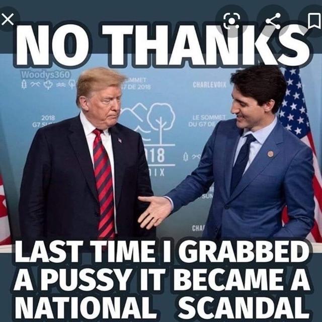 Funny Trump Pussy Memes