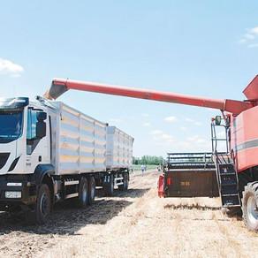 Continúa el fuerte peso del flete camionero granelero en las largas distancias