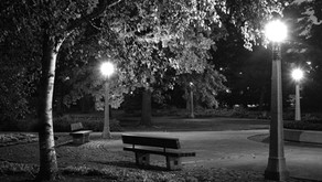 Large Format - Park at Night