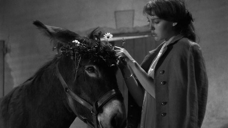 Au Hasard Balthazar: Criterion Collection Blu-ray review