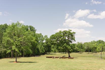 outdoor auburn ceremony wedding oak