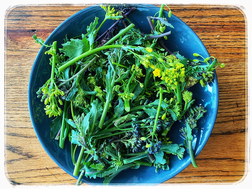 Long stem Broccoli with flowers. Image credit: Nicole Cullinan @wellnessplacein