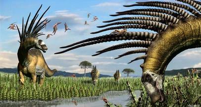 Descoberta na Argentina nova espécie de dinossauro saurópode com espinhos