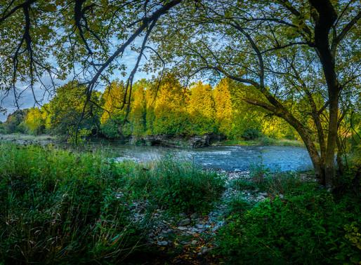 VIDEO: Early fall morning walk through Gow Park (Fergus, Ontario)