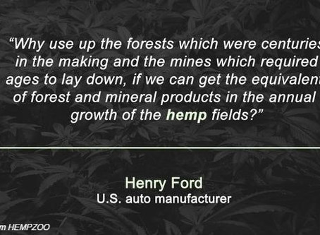 The wonderful world of Hemp
