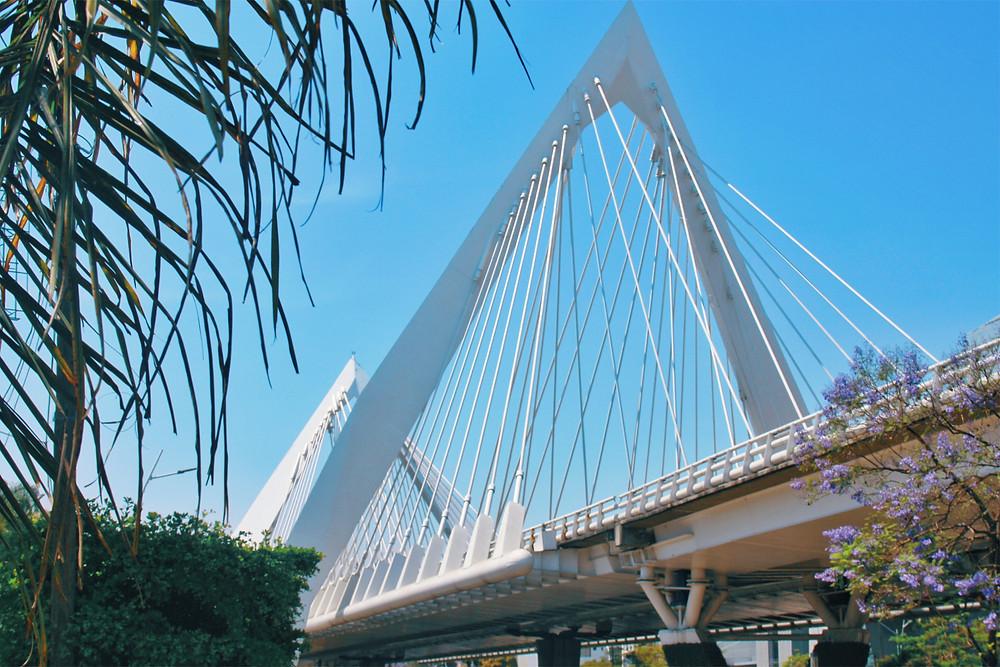 Matute Remus Bridge