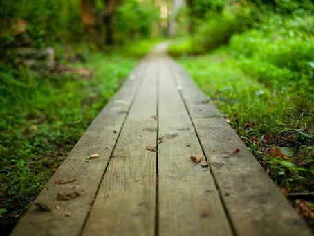 Ordem divina: Prepare o Caminho