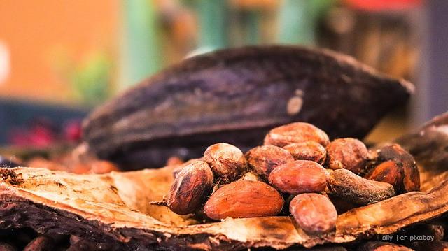 Historia del Chocolate. Bayona. Francia.
