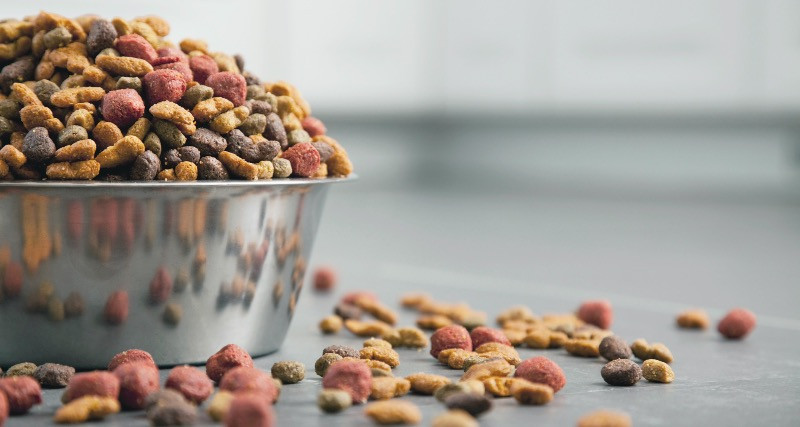 A metal dog bowl filled with grain free dry dog food