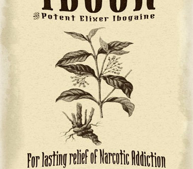 iBogaine Therapy Vs Ayahuasca Brew