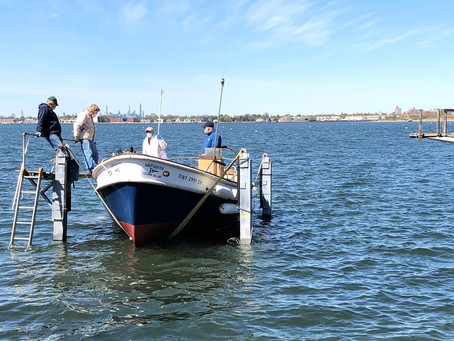 Ambrose is Launched!
