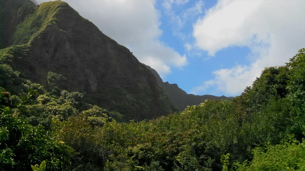 Mountains and lush green foliage of Iao Valley in Maui