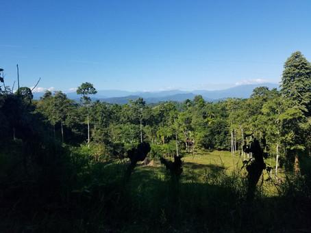Costa Rican Winter Vibes