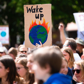 How to become an environmentalist for free!