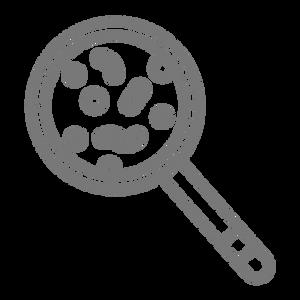 5864855 - bacteria disease magnify