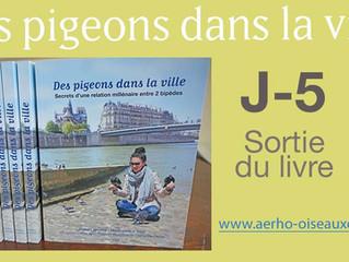 """""""Des pigeons dans la ville"""" disponible dans quelques jours"""