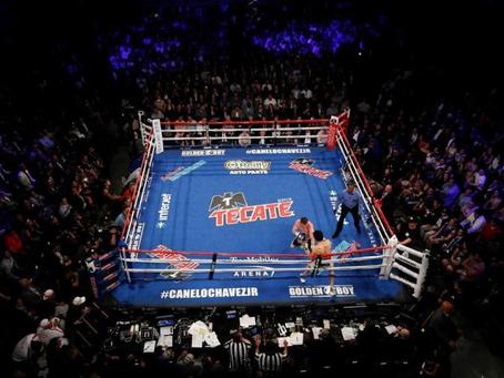 Pogled v boksarsko prihodnost,  1.del