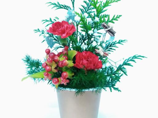 カップ生け花:11月 クリスマスの花