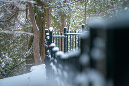 Snow covered fence along the 70ft cliffs of the Elora Gorge