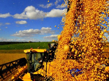 China compra mais 327 mil t de soja dos EUA e altas em Chicago superam 15 pts nesta 4ª feira