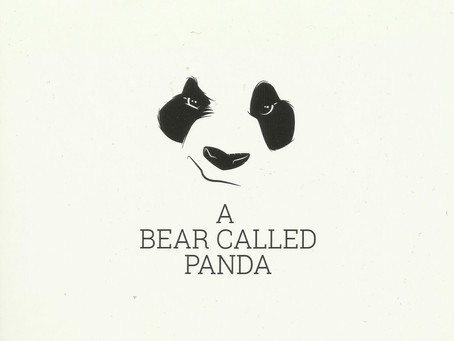 A Bear Called Panda - A Bear Called Panda (The Sausage Orphans Company)