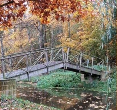 Listopadová soutěž na téma krásy podzimu