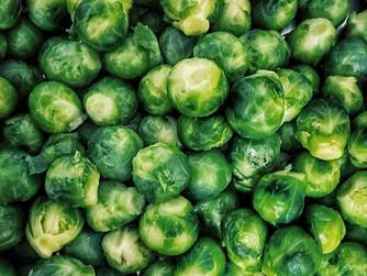 Saiba tudo sobre Como Cultivar Couve-de-Bruxelas em Apenas 4 etapas