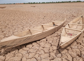 Man-made global warming: what are the current effects?